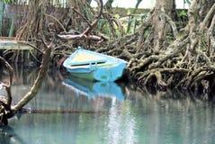 Amerika - Dominikanische Republik - Mangroven-Sumpf stockbild