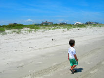 Amerika strand södra carolina Royaltyfri Fotografi