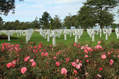 Amerikaanse Begraafplaats in Normandië Stock Afbeelding