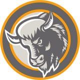 Amerikaanse Buffels Bison Head Circle Retro Royalty-vrije Stock Foto's
