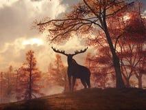 Amerikaanse elanden in de Herfst stock illustratie