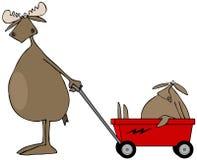 Amerikaanse elanden die baby in wagen trekken Stock Afbeelding