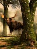 Amerikaanse elanden en Eekhoorn stock illustratie