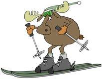 Amerikaanse elanden op skis Stock Foto's