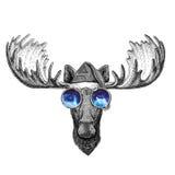 Amerikaanse elanden, van het de hoeden Nieuwe jaar van elandenkerstmis de vooravond Vrolijke Kerstmis en de gelukkige nieuwe van  royalty-vrije illustratie