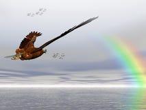 Amerikaanse kale adelaar, Accipitridae, Stock Afbeelding