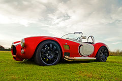 Amerikaanse Klassieke Auto - Slang in het Gras Royalty-vrije Stock Afbeeldingen