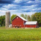 Amerikaanse Landbouwgrond stock afbeeldingen