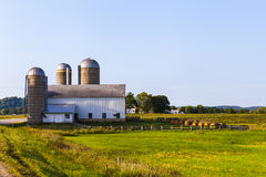 Amerikaanse Landbouwgrond Royalty-vrije Stock Afbeeldingen