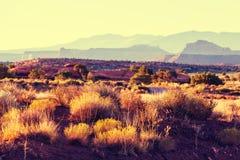 Amerikaanse landschappen Royalty-vrije Stock Fotografie