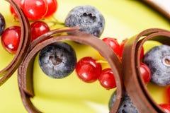 Amerikaanse veenbes en Bosbessenfruitcake Royalty-vrije Stock Afbeelding