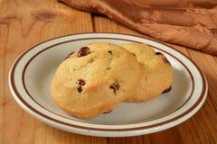 Amerikaanse veenbes oranje koekjes Royalty-vrije Stock Afbeelding
