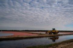 Amerikaanse veenbesoogst met een tractor stock afbeeldingen