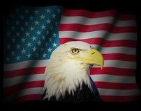 Amerikaanse vlag Stock Foto's