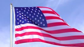 Amerikaanse Vlag stock videobeelden
