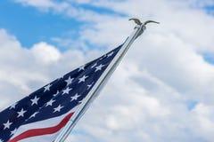 Amerikaanse vlag die in de blauwe hemel vliegen stock afbeeldingen