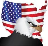 Amerikaanse vlag en adelaar Stock Foto