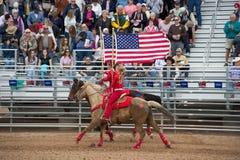 Amerikaanse vlag op horseback Stock Afbeelding