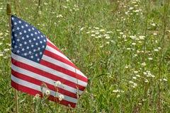 Amerikaanse vlag in wildflowerweide Stock Afbeeldingen