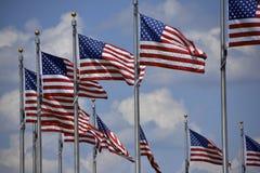 Amerikaanse Vlaggen Stock Foto