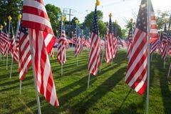 Amerikaanse Vlaggen Royalty-vrije Stock Foto