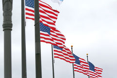 Amerikaanse Vlaggen Stock Afbeelding