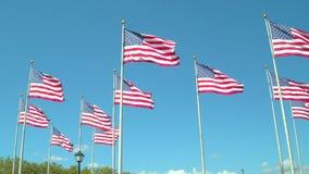 Amerikaanse vlaggen in de wind stock footage