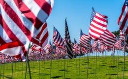 Amerikaanse vlaggen in de wind stock fotografie