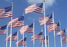 Amerikaanse Vlaggen die in Wind, Miami, Florida vliegen Stock Afbeelding