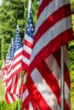 Amerikaanse Vlaggen op een rij royalty-vrije stock afbeelding