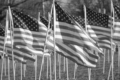 Amerikaanse Vlaggen in zwart-wit Stock Foto's