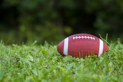 Amerikaanse Voetbal op het gebied met groen gras royalty-vrije stock foto's