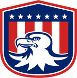 Amerikan skalliga Eagle Head Flag Shield Retro Arkivbilder