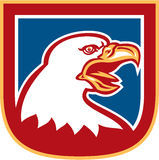 Amerikan skalliga Eagle Head Shield Retro Royaltyfri Foto