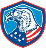 Amerikan skalliga Eagle Head Shield Retro Arkivfoto