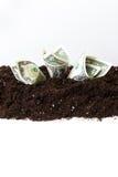 Amerikanische Dollar Stockfoto