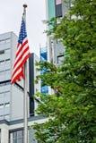 Amerikanische Flagge auf einem Pol Stockbild