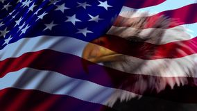 Amerikanische Flagge Eagle stock video
