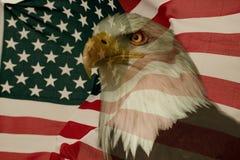 Amerikanische Flagge mit Adler Stockfotos