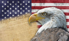 Amerikanische Flagge und kahler Adler Stockfotos
