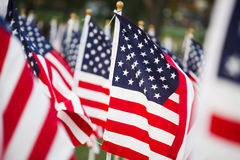 Amerikanische Flaggen Stockfoto