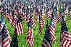 Amerikanische Flaggen Stockbilder