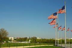 Amerikanische Flaggen, die das Washington-Denkmal umgeben Lizenzfreies Stockfoto