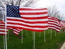 Amerikanische Flaggen, die in den Wind fliegen stockbild
