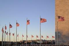 Amerikanische Flaggen in Washington, DC stockbilder