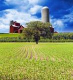 Amerikanische Landschaft Stockbild