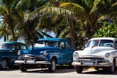 Amerikanische Oldtimers Kubas unter Palmen Stockbild