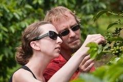Amerikanische und europäische Paare auf Kaffeeplantage stockbild