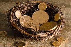 Amerikanische US Eagle Gold Coin Nest Egg Stockfoto