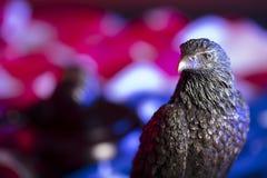 Amerikanischer Adler Unabhängigkeitstagthema Lizenzfreie Stockfotos